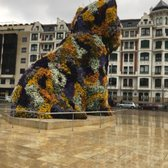 Guggenheim Museo.Museo Guggenheim Bilbao 653 Photos 130 Reviews Landmarks