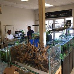 Aquascape Ideas Aquascape Store Hours