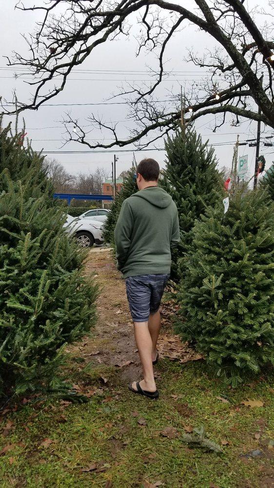 Suzanne Eaton Christmas Trees: 782 Elden St, Herndon, VA