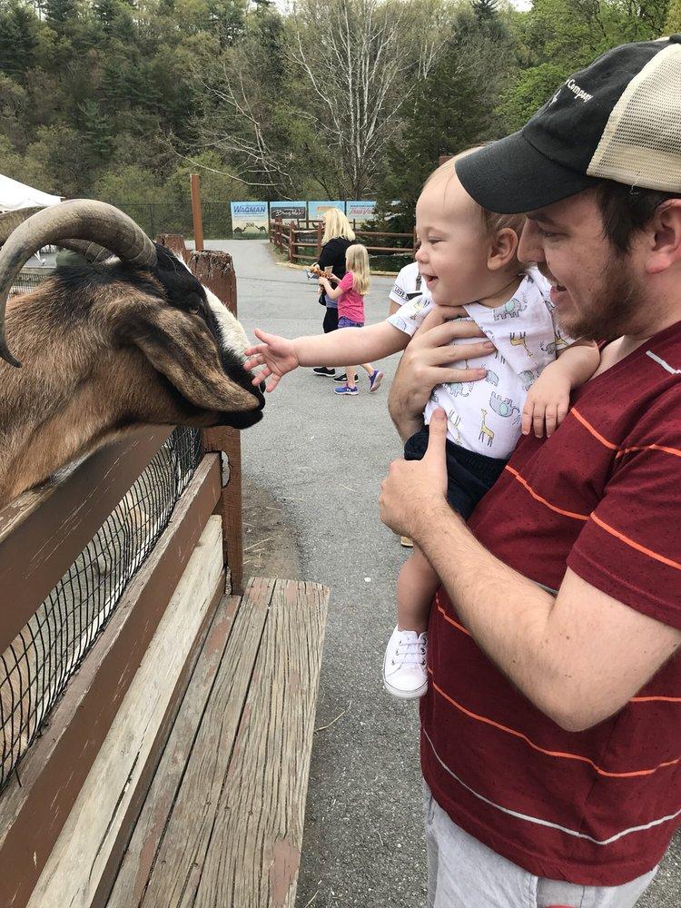 Lehigh Valley Zoo: 5150 Game Preserve Rd, Schnecksville, PA