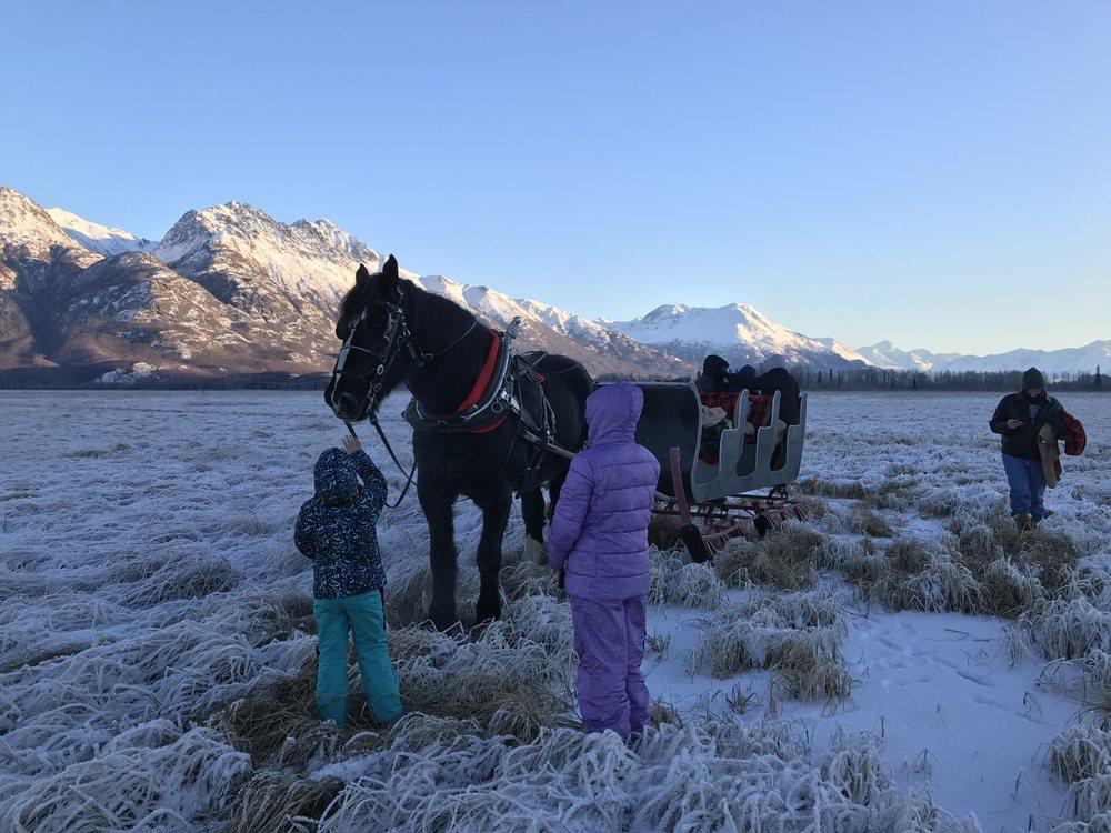 Alaska Horse Adventures: 18810 E Walling Rd, Palmer, AK