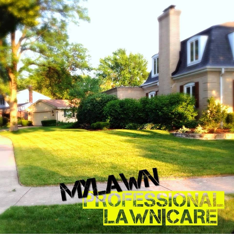 Professional lawn care yelp for Professional garden maintenance