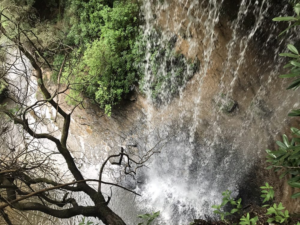 Colditz Cove Nature Area: Northrup Falls Rd, Jamestown, TN