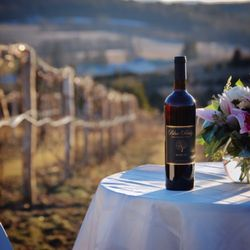 Photo of Blue Ridge Winery - Saylorsburg PA United States & Blue Ridge Winery - 151 Photos u0026 68 Reviews - Wineries - 239 Blue ...
