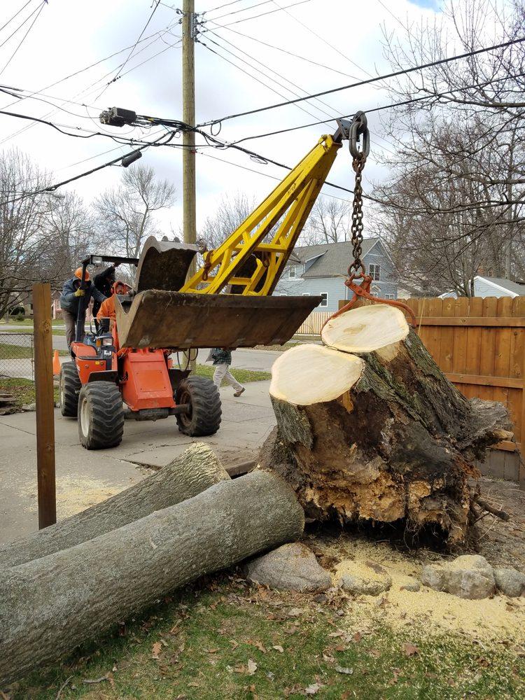 Woodsman Services: Royal Oak, MI