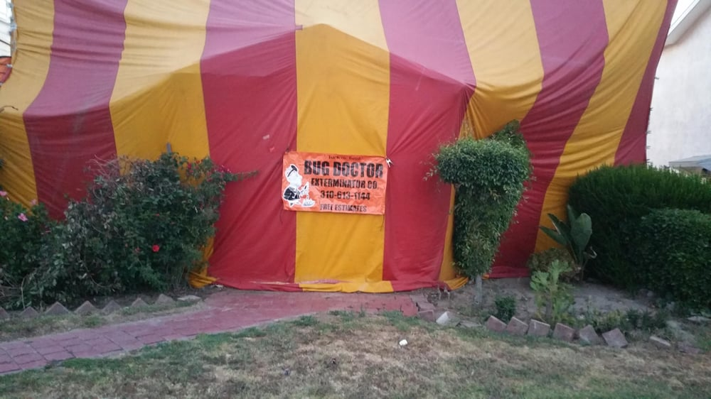 Photo of Bug Doctor Exterminator Co. - Los Angeles CA United States. & Tent Fumigation for bed bugs - Yelp