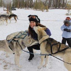Dog Sled Rides of Winter Park - 35 Photos & 22 Reviews ...