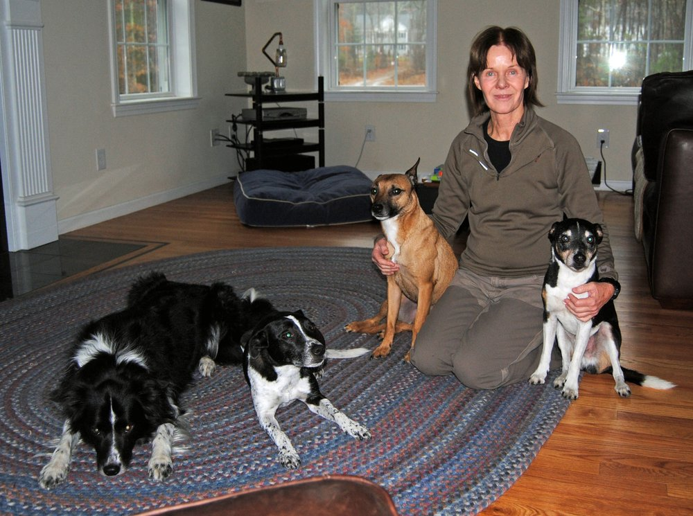 Bed Bug Detection K9s: Boston, MA