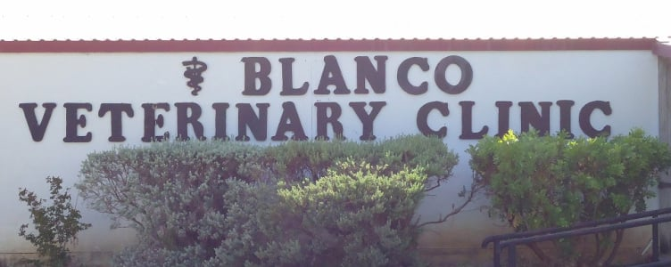 Blanco Veterinary Clinic: 1494 Loop 163, Blanco, TX