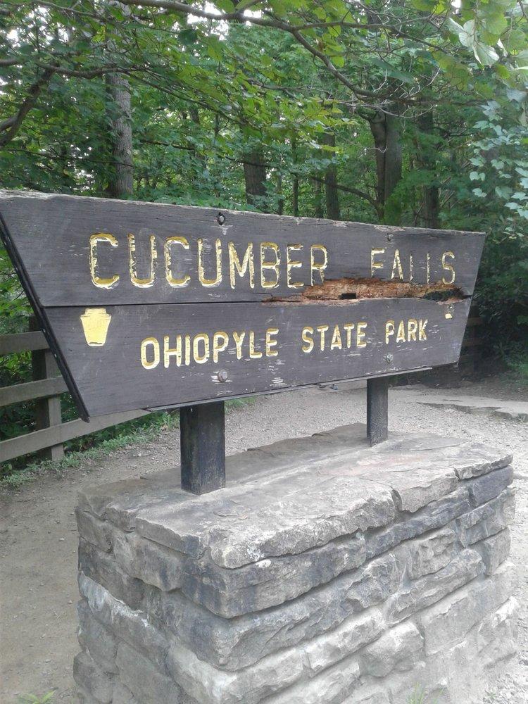 Cucumber Waterfall: 124 Main St, Ohiopyle, PA