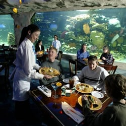 Photo Of Aquarium Restaurant Kemah Tx United States