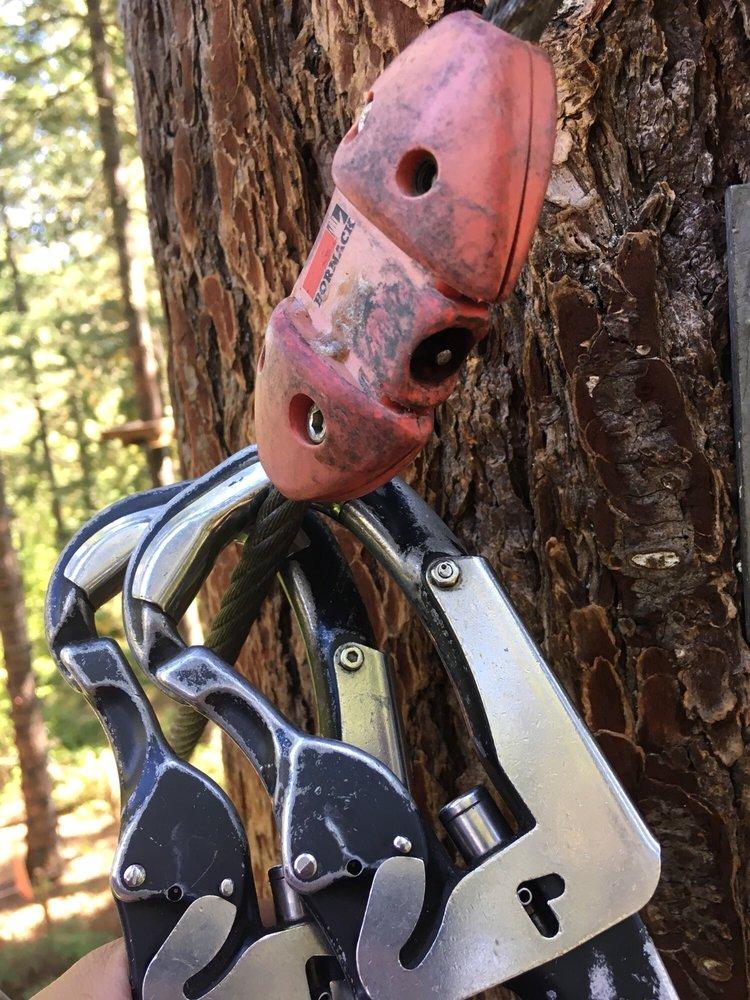 Social Spots from Tree to Tree Adventure Park