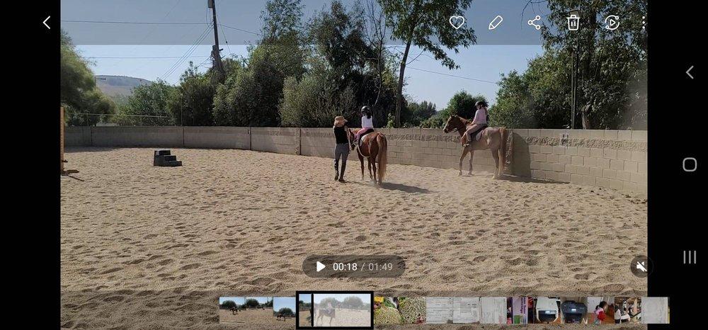 Blue Heart Equestrian: Rowland Heights, CA