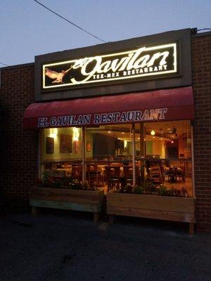 El Gavilan Restaurant - 60 Photos & 48 Reviews - Latin
