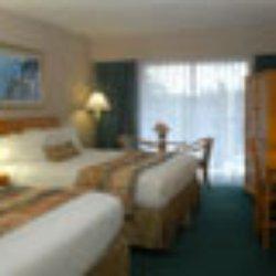 Ramada by wyndham victoria 27 photos 26 reviews hotels 123 photo of ramada by wyndham victoria victoria bc canada guest room solutioingenieria Images