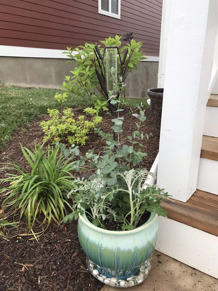 Ivy Corner Garden Center Gift Shop & Florist - Nurseries & Gardening ...