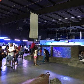 San Antonio Aquarium - 484 Photos & 222 Reviews ...