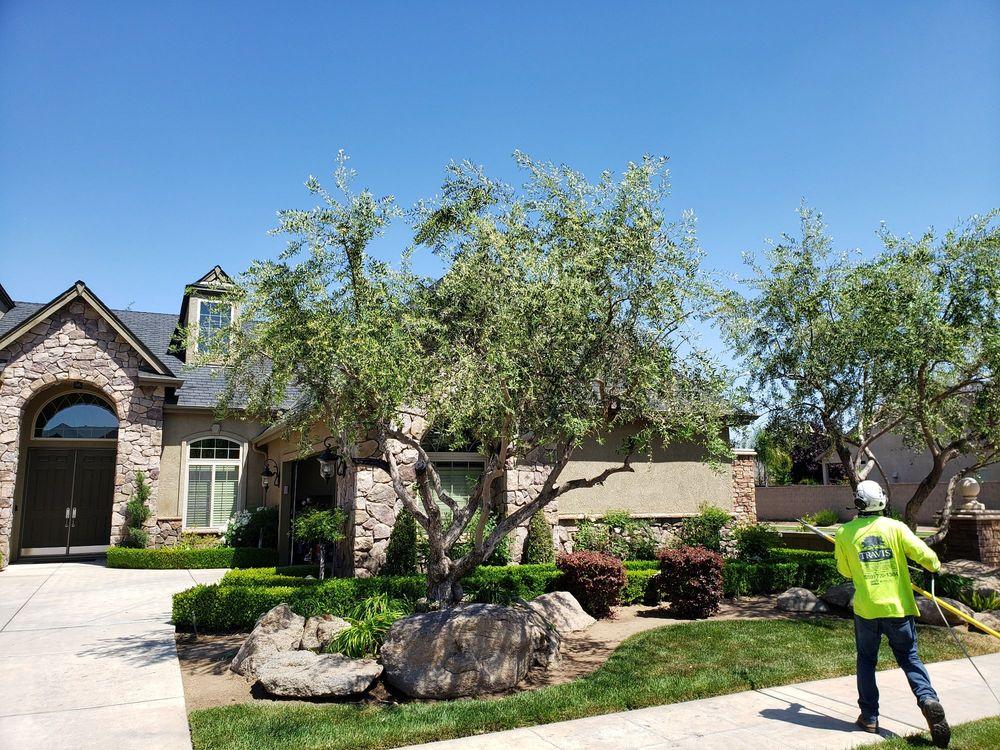 Travis' Tree Service