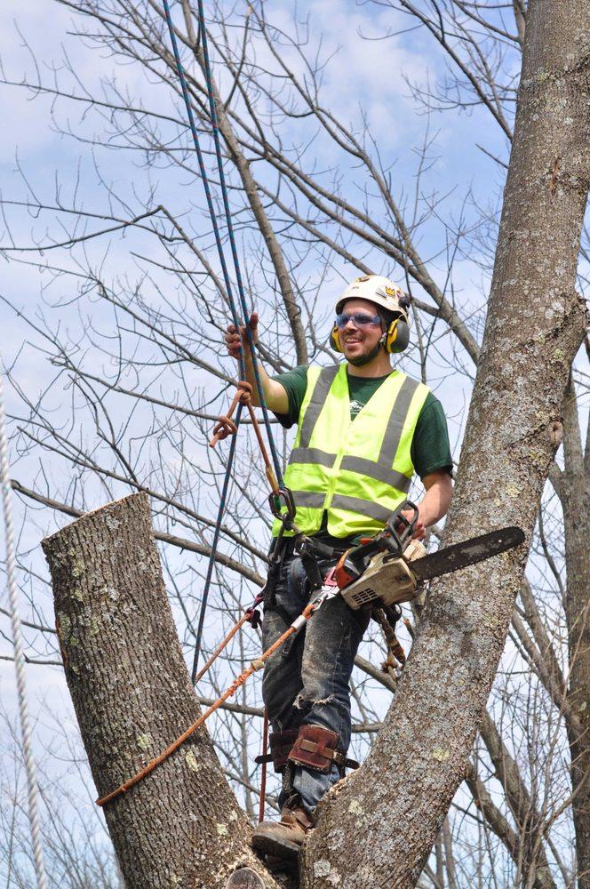 Treemaster: Wellsboro, PA