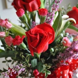 Photo Of Flowers By Chi Federal Way Wa United States For Valentines