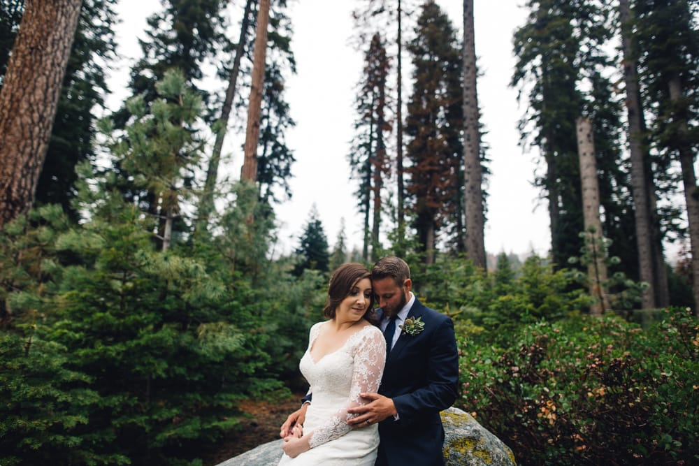 Photo Of Sequoia Weddings National Park Ca United States Marissa