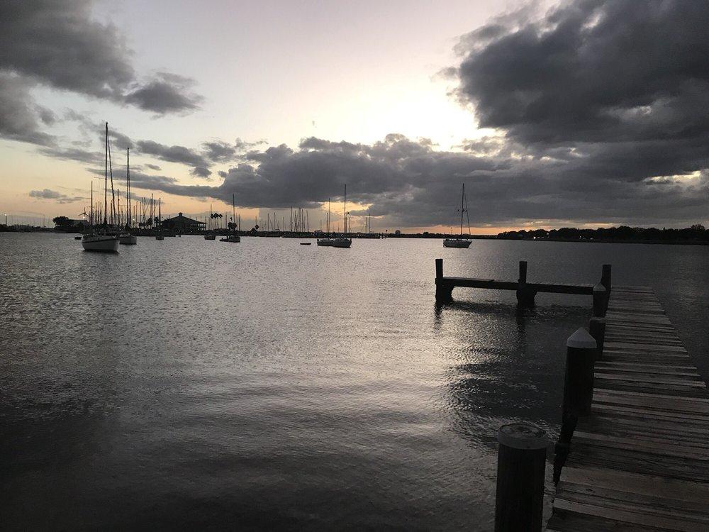 Davis Island Tampa Fl Rentals