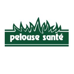 Pelouse sante gardeners 66 rue dubois saint eustache for Service entretien pelouse