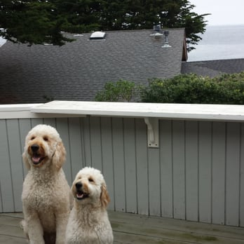 Monterey Bay Property Management - 23 Photos & 31 Reviews