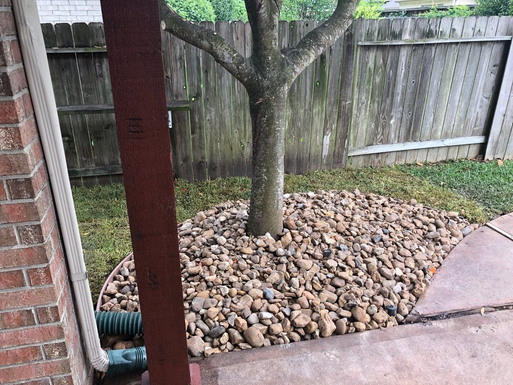 Precision Tree and Landscaping: 6135 McKeever Rd, Pearland, TX