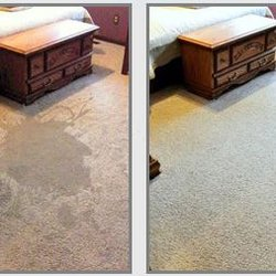 The Allen Carpet Cleaning Request A