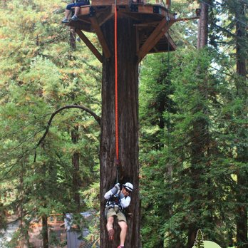 Photo of Sonoma Canopy Tours - Occidental CA United States. The quick jump & Sonoma Canopy Tours - 257 Photos u0026 411 Reviews - Tours - 6250 ...