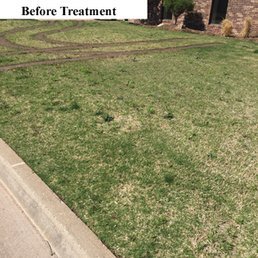 photo of elite lawn care oklahoma city ok united states before treatment - Lawn Treatment