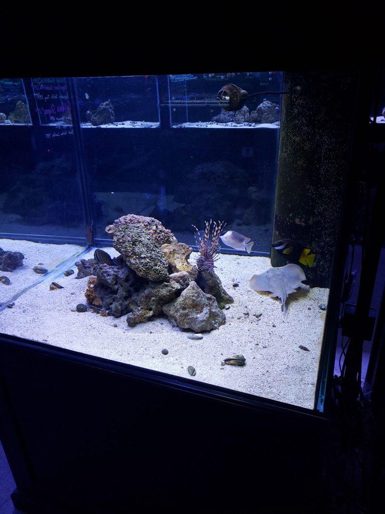 Fish Freaks: 2502 S, Omaha, NE