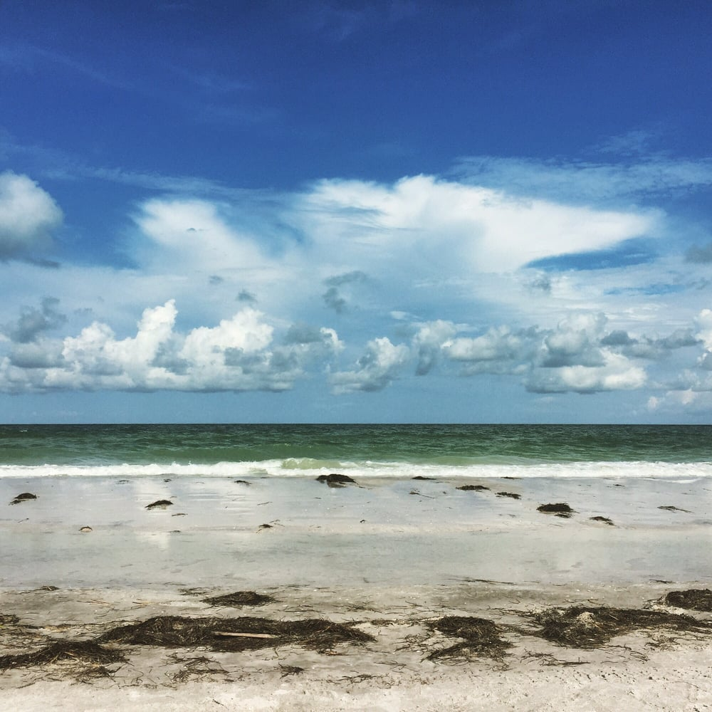 Caladesi Island Florida: Happy Place