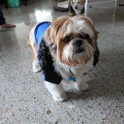 PetSmart - Pet Training - 5050 Se 14Th Street, Des Moines