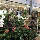 Armstrong Garden Centers 118 Photos 46 Reviews Nurseries Gardening 10320 Friars Road