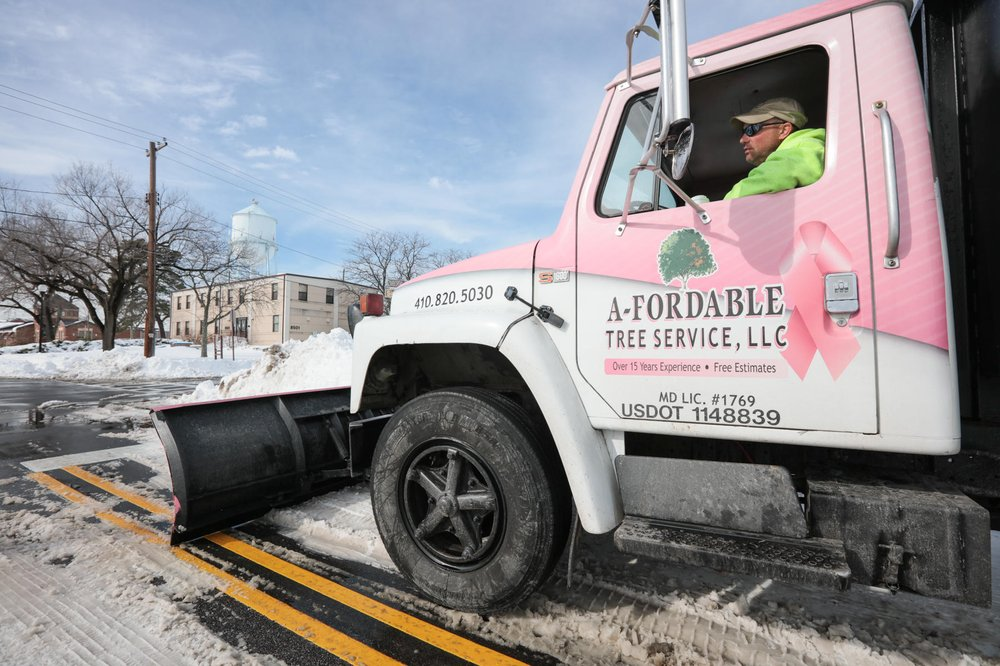 A-Fordable Tree Service: 605 Dover Rd, Easton, MD