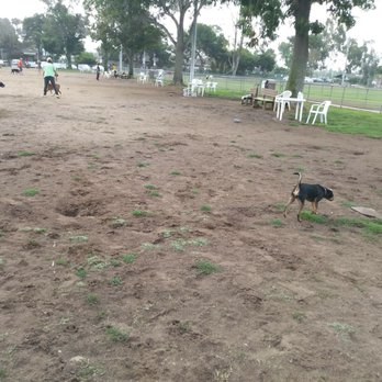 Friends Of Kearny Mesa Dog Park