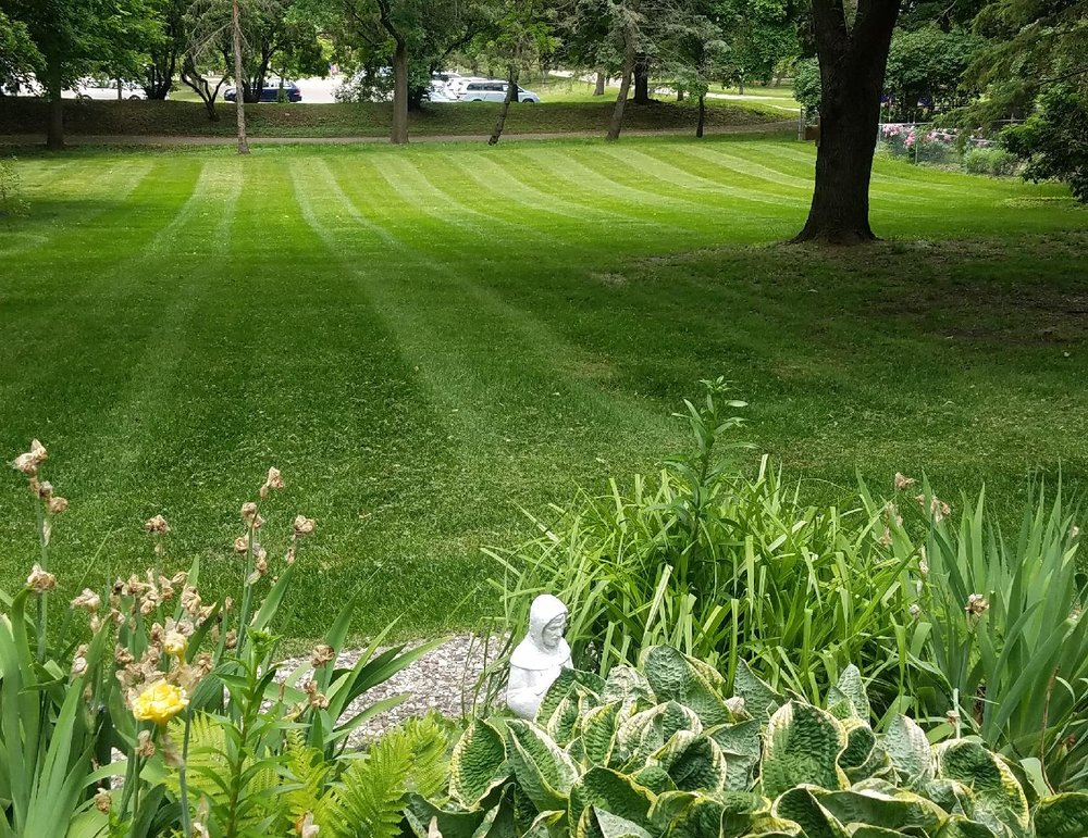 Dave's Green Thumb Lawn Care: St Paul, MN