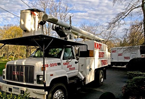Knot Just Trees: 724 Montauk Hwy, Bayport, NY