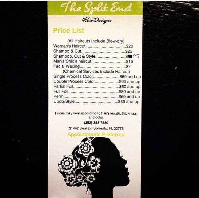 The Split End: 31442 Deal Dr, Sorrento, FL