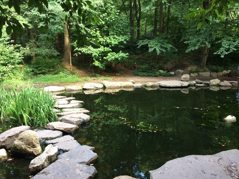 Briar Bush Nature Center: 1212 Edge Hill Rd, Abington, PA