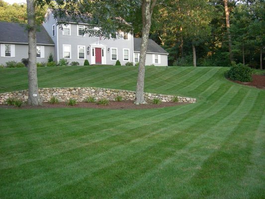 Photo for Five Star Landscaping & Tree Service - Five Star Landscaping & Tree Service - Tree Services - 69 First St