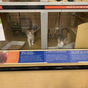 San Jose Animal Care Center - 264 Photos & 317 Reviews