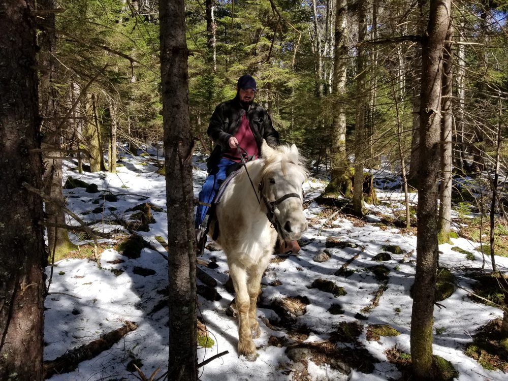 Photo of Autumn Breeze Stables: Snowshoe, WV
