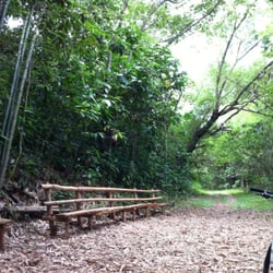 Places to go biking in manila a yelp list by ron c - La mesa eco park swimming pool photos ...