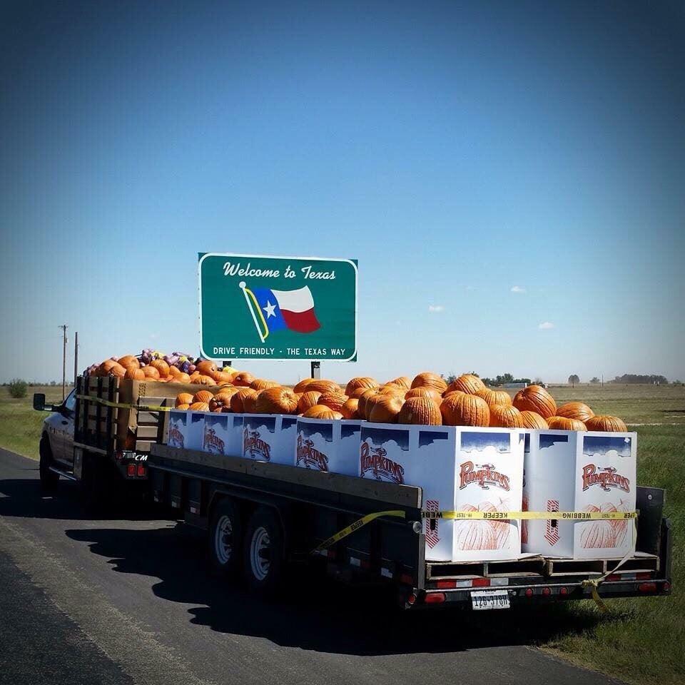 Bluntzer Fruit Stand: 5459 Fm 624, Robstown, TX