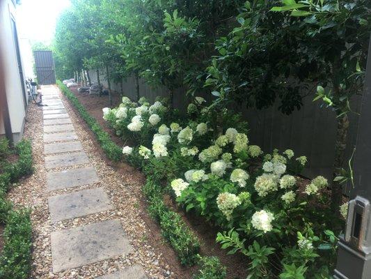 Photo of Pro T Landscaping - New Orleans, LA, United States. Let us - Pro T Landscaping - Nurseries & Gardening - 1519 S Jefferson Davis