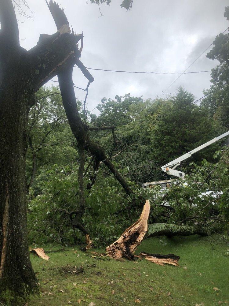 Adirondack Tree Experts: Beltsville, MD