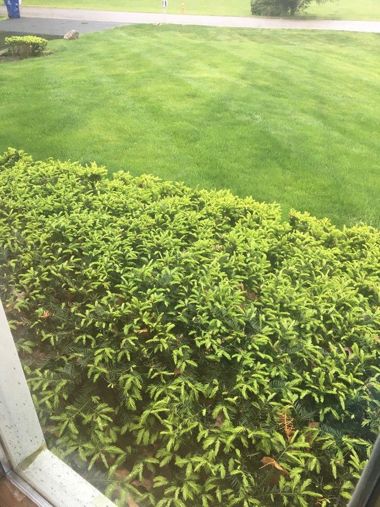McRae's Lawn Service